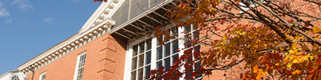 Tree with autumn leaves in front of campus building